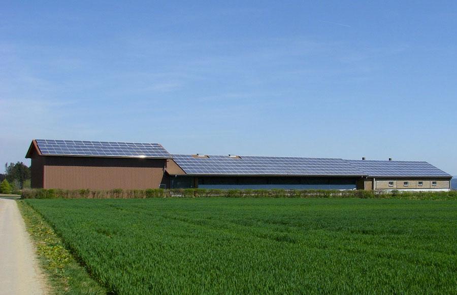 ферма, оборудованная фотоэлементами