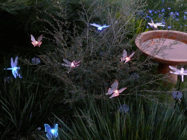 стрекозы и бабочки